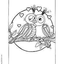 صفحة تلوين عصفورين عاشقين