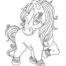 صفحة تلوين حصان ظريف