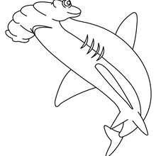 تلوين على الإنترنت القرش المطرقة