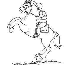 صفحة تلوين فتى يمتطي حصانًا