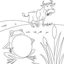 صفحة تلوين الضفدعة التي أرادت أن تكون كبيرة بحجم الثور