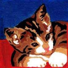 قطّ 2