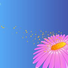 الزهور وحبوب اللقاح