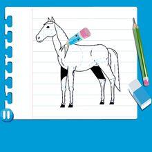درس فيديو حول كيفيّة رسم حصان