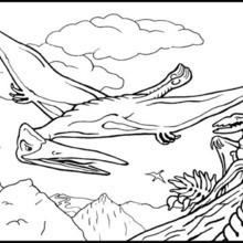 صفحة تلوين زاحف طائر